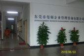 东莞市曼顿企业管理咨询有限公司珠海办事处